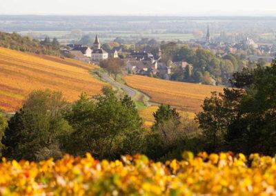 BSM01-Domaine-Douhairet-village-monthelie