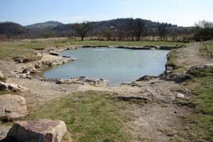 Source de Saladis